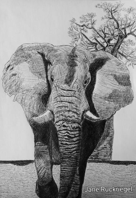 Laufender Elefant