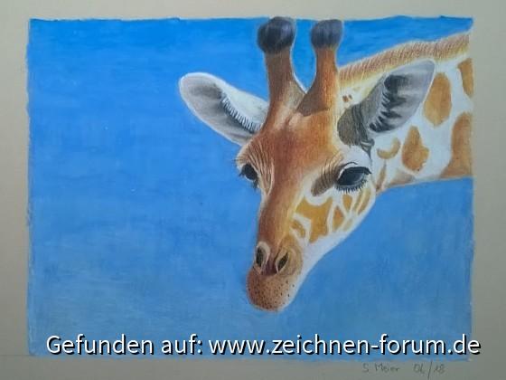 Giraffe von Zwerg