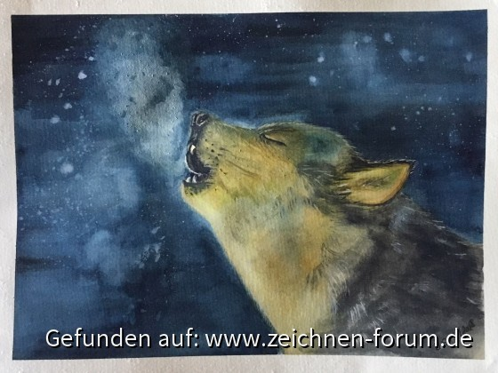 Wolf in Aquarell