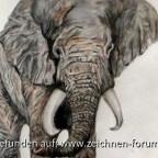 Elefant mit Aquarell gemalt.