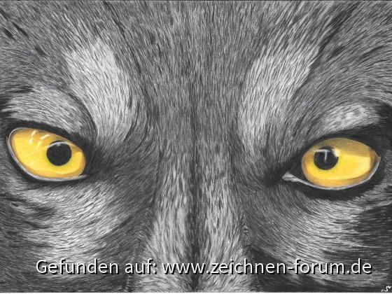 Der schielende Wolf