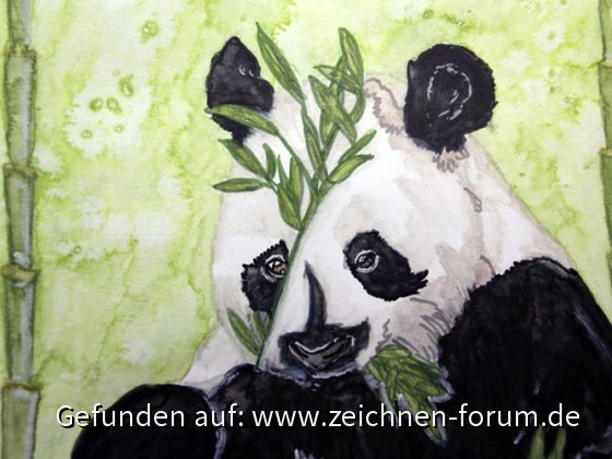 Pandabär in Aquarell