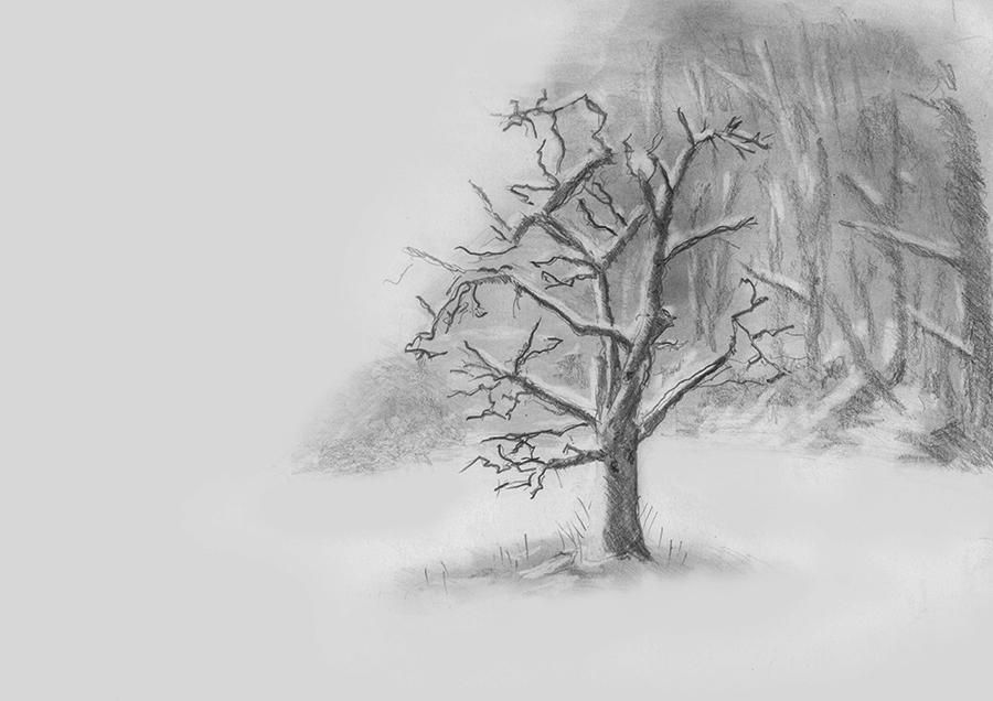 Winter, Baum im Nebel