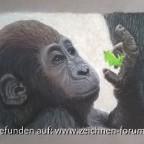 Gorilla Baby aus dem Zoo Leipzig