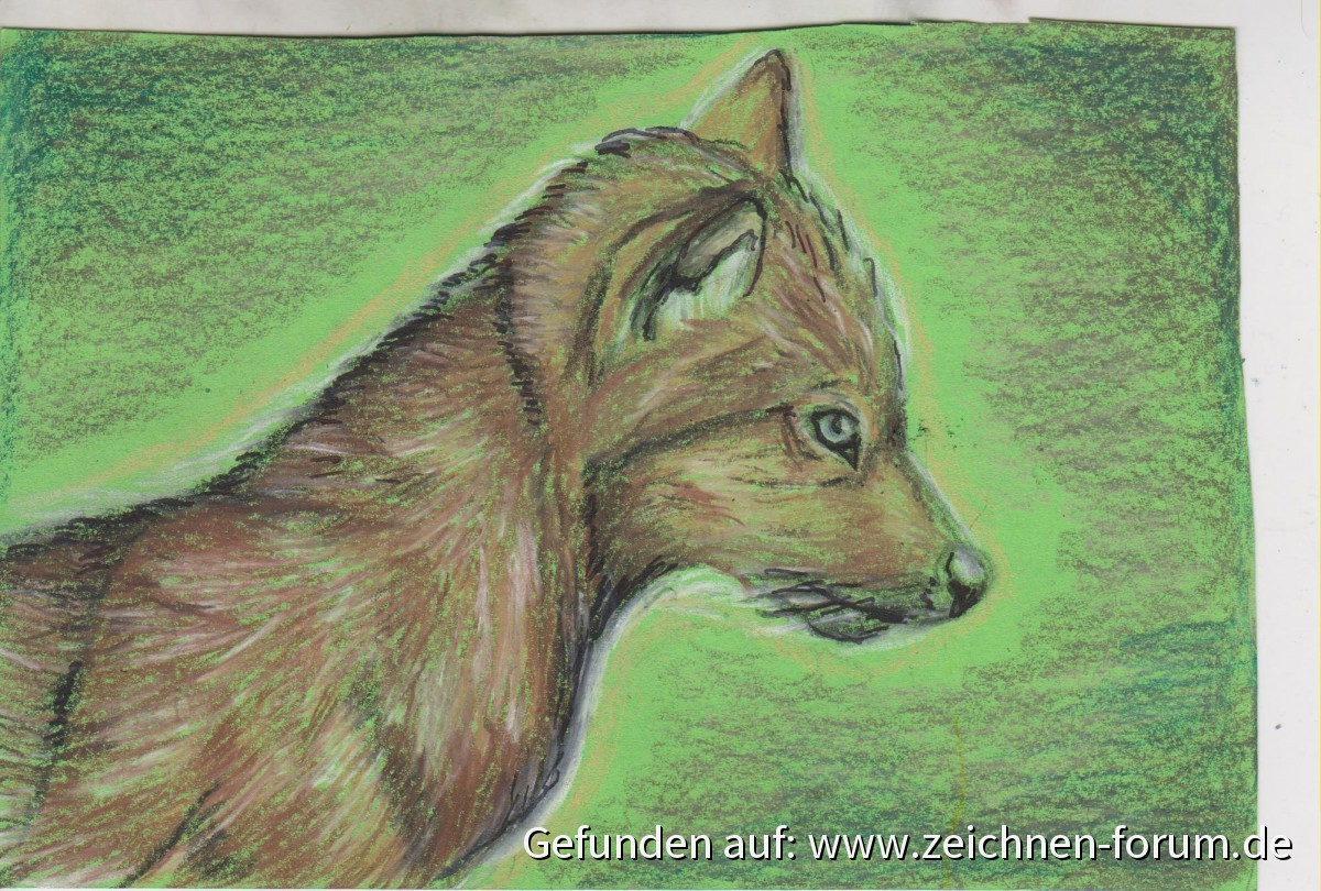 Postkarte Wölfchen