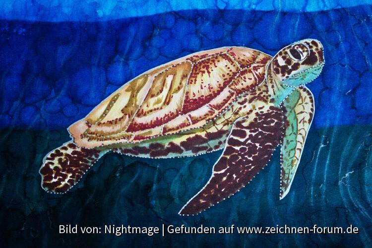 Meeresschildkröte mit Markern