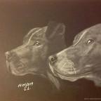 Ganz liebe Kampfhunde