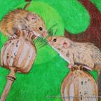 Zwei Mäuse auf Mohnstengeln