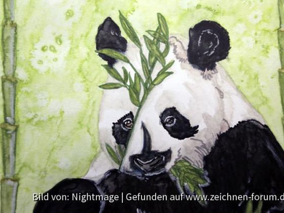 Pandabär in Aquarell