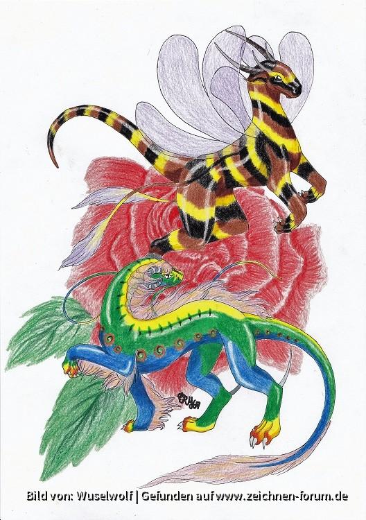 Die Raupe Die Biene Zeichnen Forum