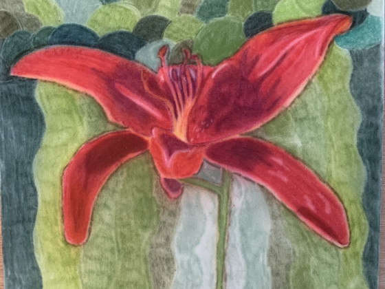 Rote Lillie in Pastell