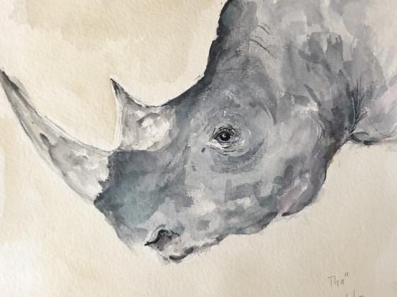 Nashorn Maverick